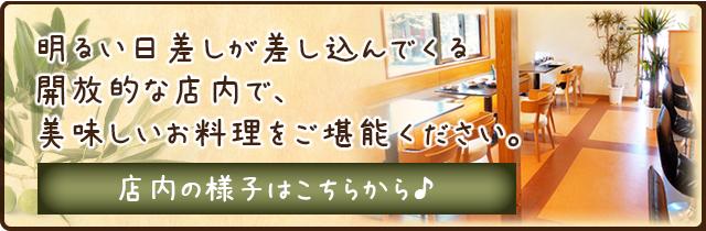tennai_banner